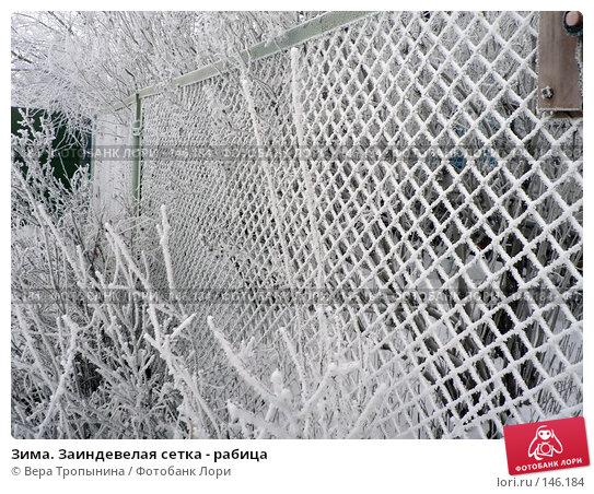 Зима. Заиндевелая сетка - рабица, фото № 146184, снято 27 июля 2017 г. (c) Вера Тропынина / Фотобанк Лори