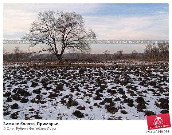 Зимнее болото, Приморье, фото № 149056, снято 13 декабря 2007 г. (c) Олег Рубик / Фотобанк Лори