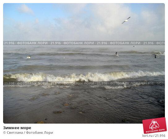 Зимнее море, фото № 21916, снято 25 января 2006 г. (c) Светлана / Фотобанк Лори