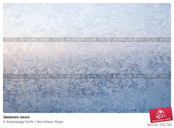 Зимнее окно, фото № 172732, снято 22 февраля 2017 г. (c) Александр Fanfo / Фотобанк Лори