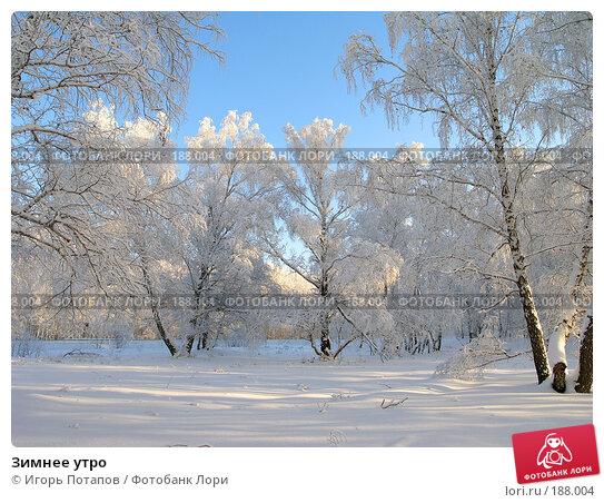 Зимнее утро, фото № 188004, снято 9 июля 2004 г. (c) Игорь Потапов / Фотобанк Лори