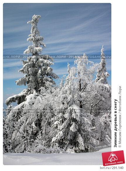 Купить «Зимние деревья в снегу», фото № 291140, снято 7 марта 2006 г. (c) Максим Горпенюк / Фотобанк Лори
