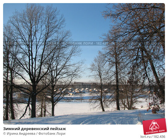 Купить «Зимний деревенский пейзаж», фото № 182436, снято 20 января 2008 г. (c) Ирина Андреева / Фотобанк Лори