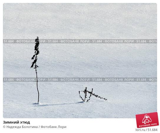 Купить «Зимний этюд», фото № 51684, снято 31 января 2006 г. (c) Надежда Болотина / Фотобанк Лори
