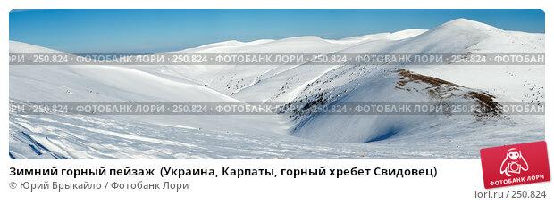 Зимний горный пейзаж  (Украина, Карпаты, горный хребет Свидовец), фото № 250824, снято 21 июля 2017 г. (c) Юрий Брыкайло / Фотобанк Лори