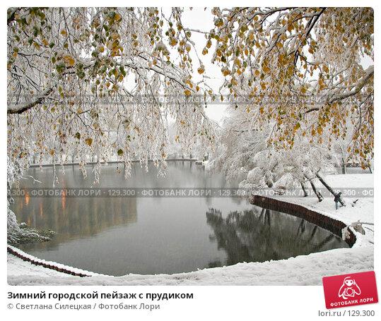 Зимний городской пейзаж с прудиком, фото № 129300, снято 15 октября 2007 г. (c) Светлана Силецкая / Фотобанк Лори