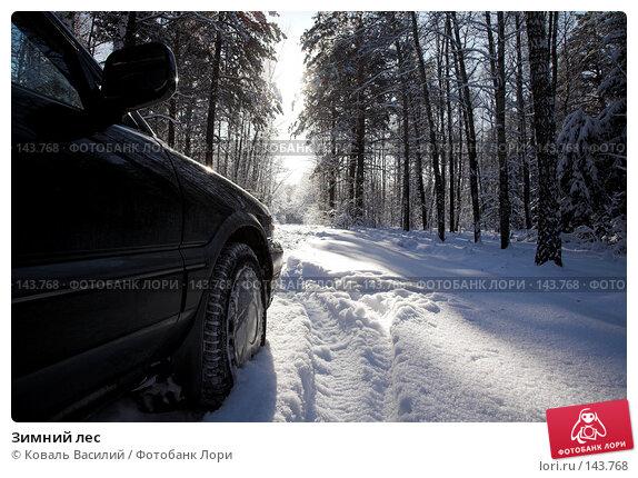 Зимний лес, фото № 143768, снято 11 ноября 2007 г. (c) Коваль Василий / Фотобанк Лори