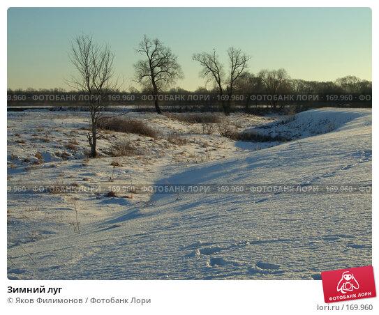 Зимний луг, фото № 169960, снято 3 января 2008 г. (c) Яков Филимонов / Фотобанк Лори