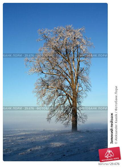 Купить «Зимний пейзаж», фото № 29676, снято 15 декабря 2017 г. (c) Aleksander Kaasik / Фотобанк Лори