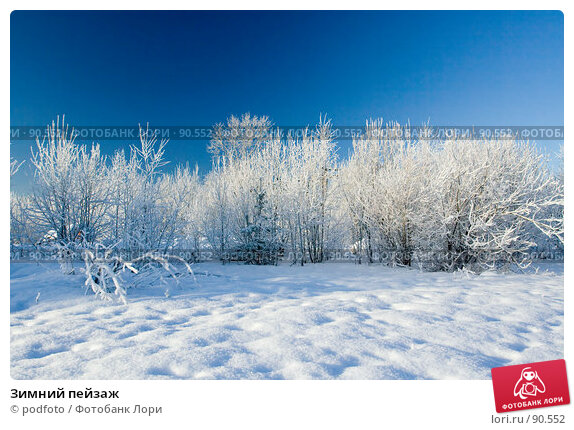 Зимний пейзаж. Стоковое фото, фотограф podfoto / Фотобанк Лори