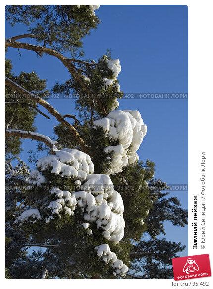 Зимний пейзаж, фото № 95492, снято 12 февраля 2007 г. (c) Юрий Синицын / Фотобанк Лори