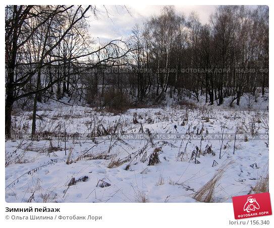 Зимний пейзаж, фото № 156340, снято 20 декабря 2007 г. (c) Ольга Шилина / Фотобанк Лори