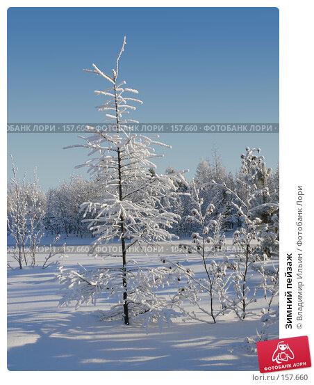 Зимний пейзаж, фото № 157660, снято 23 декабря 2007 г. (c) Владимир Ильин / Фотобанк Лори