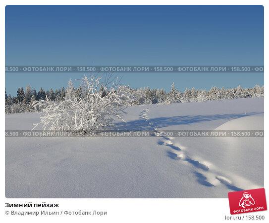 Зимний пейзаж, фото № 158500, снято 23 декабря 2007 г. (c) Владимир Ильин / Фотобанк Лори