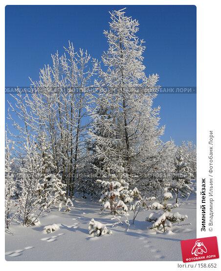 Купить «Зимний пейзаж», фото № 158652, снято 23 декабря 2007 г. (c) Владимир Ильин / Фотобанк Лори