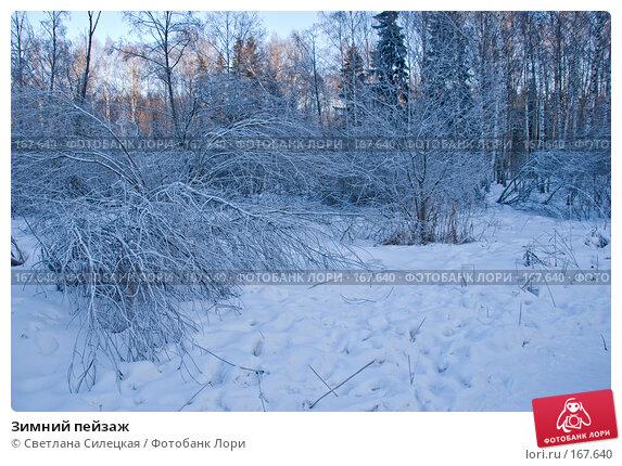 Зимний пейзаж, фото № 167640, снято 7 января 2008 г. (c) Светлана Силецкая / Фотобанк Лори
