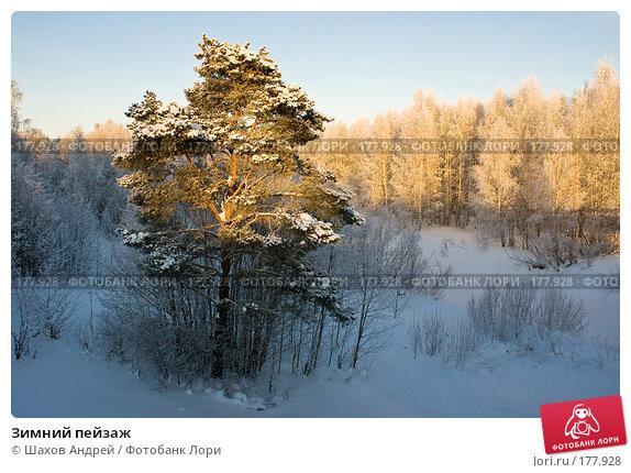 Зимний пейзаж, фото № 177928, снято 9 января 2008 г. (c) Шахов Андрей / Фотобанк Лори