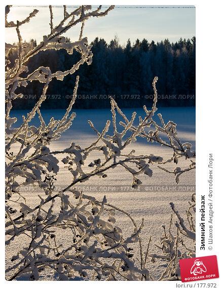 Зимний пейзаж, фото № 177972, снято 9 января 2008 г. (c) Шахов Андрей / Фотобанк Лори