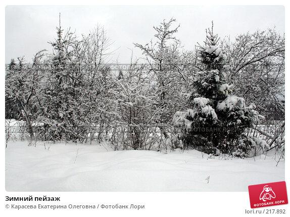 Зимний пейзаж, фото № 217892, снято 3 февраля 2008 г. (c) Карасева Екатерина Олеговна / Фотобанк Лори