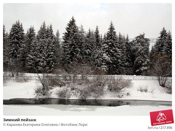 Купить «Зимний пейзаж», фото № 217896, снято 3 февраля 2008 г. (c) Карасева Екатерина Олеговна / Фотобанк Лори