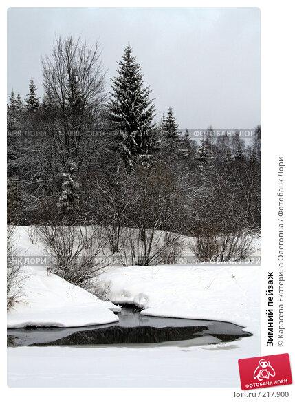 Зимний пейзаж, фото № 217900, снято 3 февраля 2008 г. (c) Карасева Екатерина Олеговна / Фотобанк Лори