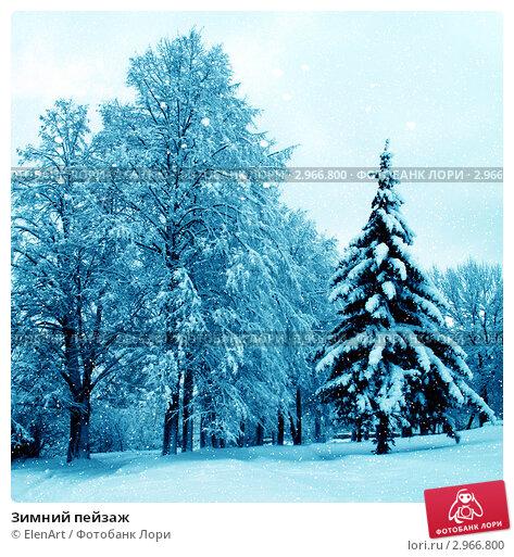 Купить «Зимний пейзаж», фото № 2966800, снято 19 апреля 2019 г. (c) ElenArt / Фотобанк Лори