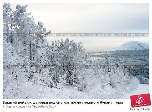 Зимний пейзаж, деревья под снегом  после снежного бурана, горы, фото № 14496, снято 3 ноября 2006 г. (c) Ольга Красавина / Фотобанк Лори