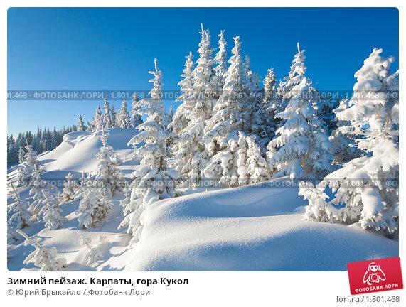 Зимний пейзаж. Карпаты, гора Кукол, фото № 1801468, снято 8 марта 2010 г. (c) Юрий Брыкайло / Фотобанк Лори