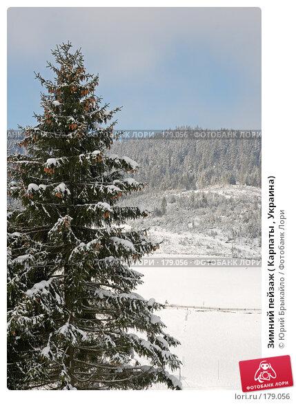 Зимний пейзаж ( Карпаты , Украина), фото № 179056, снято 17 ноября 2007 г. (c) Юрий Брыкайло / Фотобанк Лори
