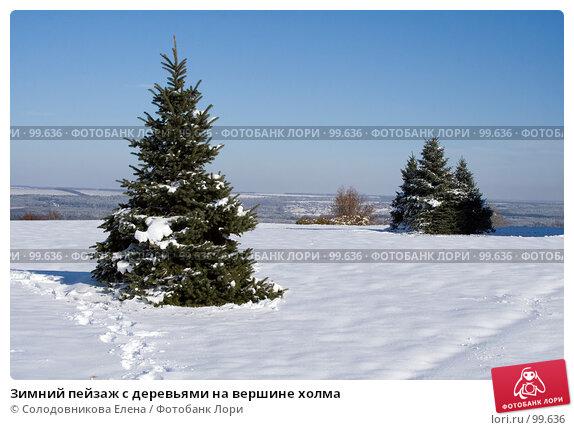 Зимний пейзаж с деревьями на вершине холма, фото № 99636, снято 5 ноября 2006 г. (c) Солодовникова Елена / Фотобанк Лори