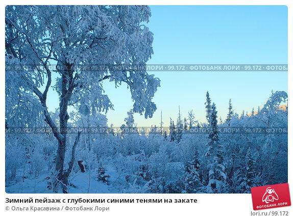 Зимний пейзаж с глубокими синими тенями на закате, фото № 99172, снято 5 ноября 2006 г. (c) Ольга Красавина / Фотобанк Лори
