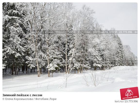 Купить «Зимний пейзаж с лесом», эксклюзивное фото № 23773996, снято 2 марта 2013 г. (c) Елена Коромыслова / Фотобанк Лори