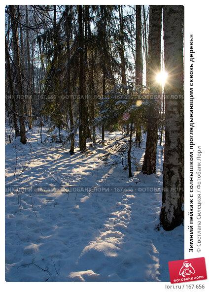 Зимний пейзаж с солнышком,проглядывающим сквозь деревья, фото № 167656, снято 7 января 2008 г. (c) Светлана Силецкая / Фотобанк Лори