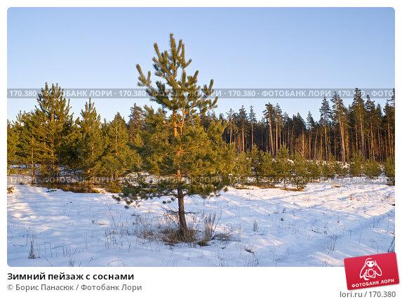 Зимний пейзаж с соснами, фото № 170380, снято 31 декабря 2007 г. (c) Борис Панасюк / Фотобанк Лори