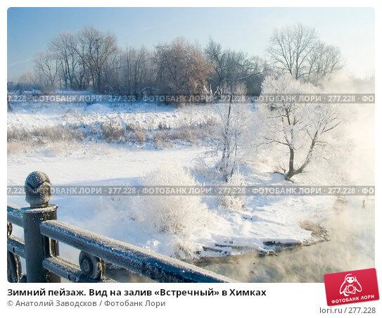 Зимний пейзаж. Вид на залив «Встречный» в Химках, фото № 277228, снято 25 ноября 2004 г. (c) Анатолий Заводсков / Фотобанк Лори