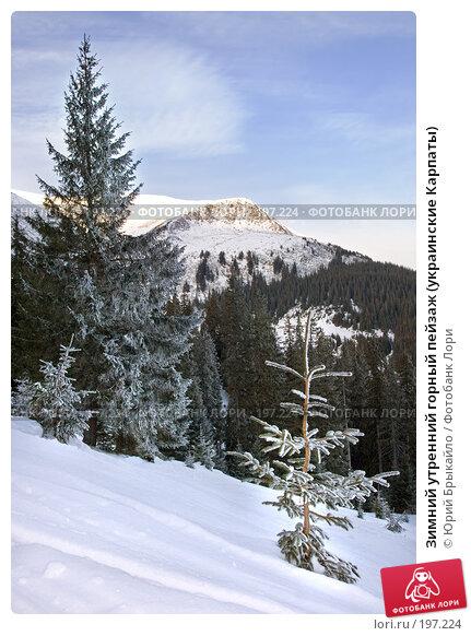 Зимний утренний горный пейзаж (украинские Карпаты), фото № 197224, снято 3 января 2008 г. (c) Юрий Брыкайло / Фотобанк Лори