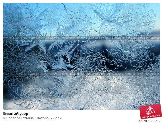 Зимний узор, фото № 170212, снято 4 января 2008 г. (c) Павлова Татьяна / Фотобанк Лори