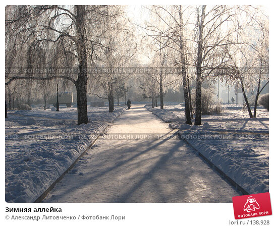 Купить «Зимняя аллейка», фото № 138928, снято 28 ноября 2007 г. (c) Александр Литовченко / Фотобанк Лори