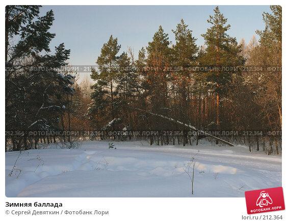 Купить «Зимняя баллада», фото № 212364, снято 22 ноября 2017 г. (c) Сергей Девяткин / Фотобанк Лори