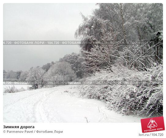 Купить «Зимняя дорога», фото № 104720, снято 15 декабря 2017 г. (c) Parmenov Pavel / Фотобанк Лори