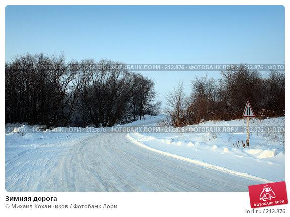 Купить «Зимняя дорога», фото № 212876, снято 2 февраля 2008 г. (c) Михаил Коханчиков / Фотобанк Лори