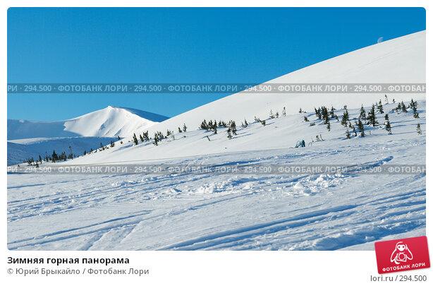 Зимняя горная панорама, фото № 294500, снято 26 апреля 2017 г. (c) Юрий Брыкайло / Фотобанк Лори
