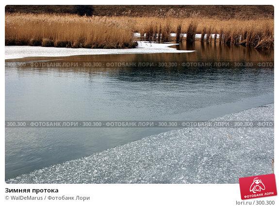 Купить «Зимняя протока», фото № 300300, снято 20 апреля 2018 г. (c) WalDeMarus / Фотобанк Лори