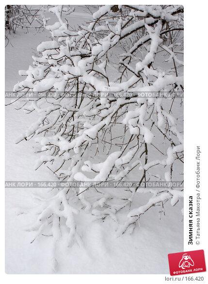 Зимняя сказка, фото № 166420, снято 15 февраля 2007 г. (c) Татьяна Макотра / Фотобанк Лори
