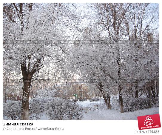 Зимняя сказка, фото № 175856, снято 10 января 2008 г. (c) Cавельева Елена / Фотобанк Лори