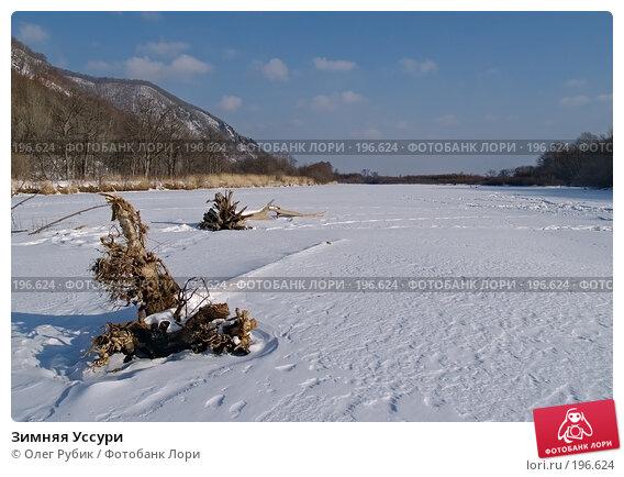 Зимняя Уссури, фото № 196624, снято 31 января 2008 г. (c) Олег Рубик / Фотобанк Лори