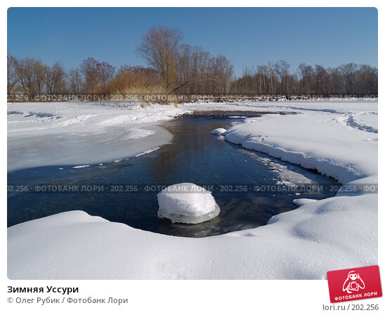 Зимняя Уссури, фото № 202256, снято 10 февраля 2008 г. (c) Олег Рубик / Фотобанк Лори