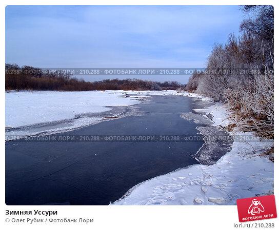 Зимняя Уссури, фото № 210288, снято 27 февраля 2008 г. (c) Олег Рубик / Фотобанк Лори