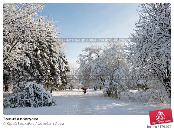 Зминяя прогулка, фото № 179072, снято 18 ноября 2007 г. (c) Юрий Брыкайло / Фотобанк Лори