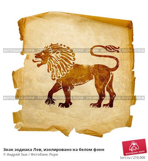 Знак зодиака Лев, изолировано на белом фоне, иллюстрация № 219000 (c) Андрей Зык / Фотобанк Лори